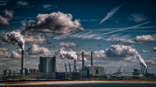 Среда в опасности. Общественные экологи Челябинска вносят предложения в защиту окружающей среды