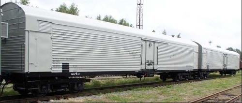 Опасный груз. В Челябинск поступило 2 вагона с подтаявшим минтаем