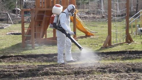 Зачистка территории. В Челябинске начинают марш против клещей