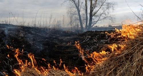 Не поджигай траву! В Челябинске сохраняется высокий класс горимости