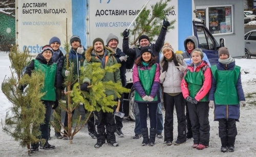 Ёлкам – вторую жизнь. В Челябинске открылись пункты утилизации новогодних деревьев